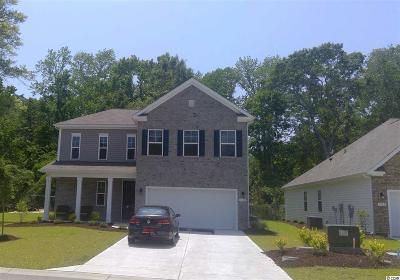 North Myrtle Beach Single Family Home For Sale: 1100 Inlet View Dr.