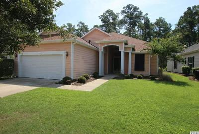 Georgetown County, Horry County Single Family Home For Sale: 134 Sugar Loaf Ln.