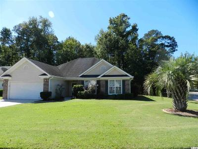 Georgetown County, Horry County Single Family Home For Sale: 2510 Oriole Dr.