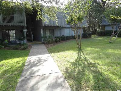 Pawleys Island Condo/Townhouse For Sale: 150 Salt Marsh Circle #29D