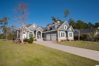 Georgetown County, Horry County Single Family Home For Sale: 300 Sprig Ln.