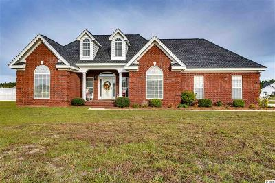 Horry County Single Family Home For Sale: 145 Highmeadow Ln.