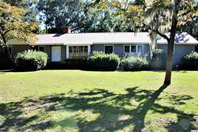 Georgetown Single Family Home For Sale: 560 Belle Isle Rd.