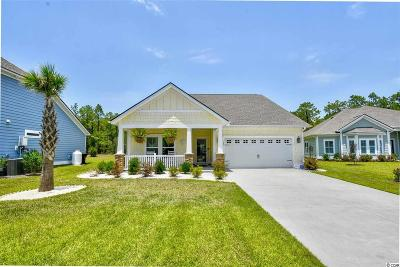 Pawleys Island Single Family Home For Sale: 345 Southgate Pkwy.