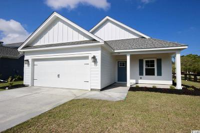 Pawleys Island Single Family Home For Sale: 24 Hagley Retreat Dr.