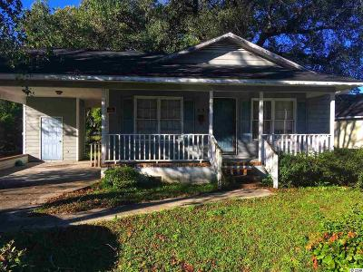 Georgetown Single Family Home For Sale: 539 Black River Rd.