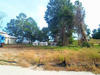 Georgetown County, Horry County Residential Lots & Land For Sale: 9345 Venezia Circle