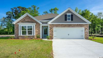 Pawleys Island Single Family Home For Sale: 201 Castaway Key Dr.