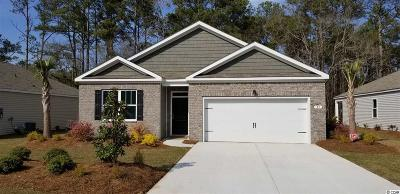 Pawleys Island Single Family Home For Sale: 23 Parkglen Dr.