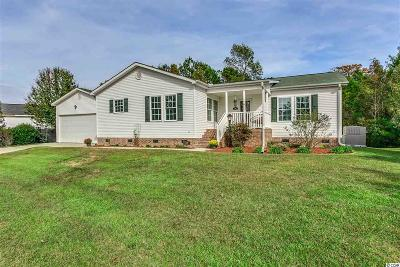 Georgetown County, Horry County Single Family Home For Sale: 4419 Erie Dr.