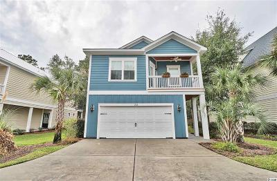 Pawleys Island Single Family Home For Sale: 216 Natures View Circle