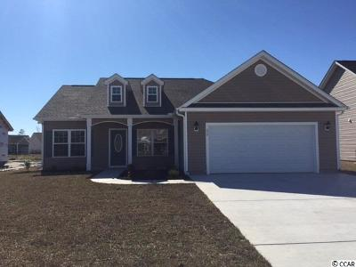 Horry County Single Family Home For Sale: 250 Copperwood Loop