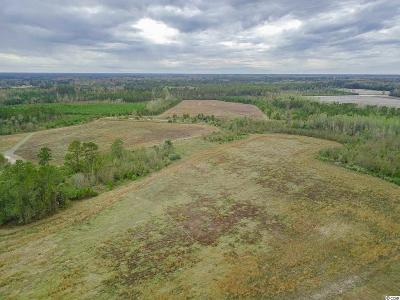Loris Residential Lots & Land For Sale: 950 Liberty Church Rd.
