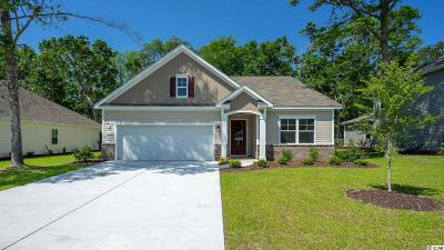 North Myrtle Beach Single Family Home For Sale: 1104 Inlet View Dr.