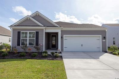 Myrtle Beach Single Family Home For Sale: 351 Firenze Loop
