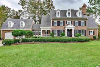 Georgetown County, Horry County Single Family Home For Sale: 181 Board Landing Circle