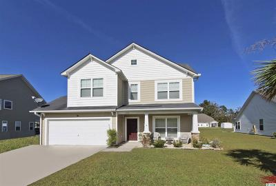 Conway Single Family Home For Sale: 216 Haley Brooke Dr.