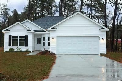 Horry County Single Family Home For Sale: 447 Hallie Martin Rd.
