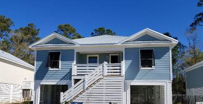 Pawleys Island Single Family Home For Sale: 39 Tidelands Trail