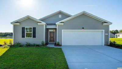 Conway Single Family Home For Sale: 255 Carmello Circle
