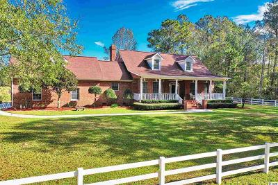 Georgetown County, Horry County Single Family Home For Sale: 1961 Bright Rd.