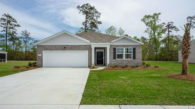 Reflections Single Family Home For Sale: 244 Carmello Circle