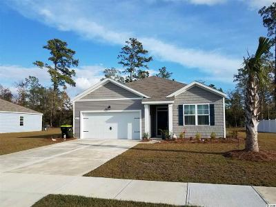 Reflections Single Family Home For Sale: 248 Carmello Circle