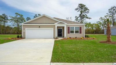 Reflections Single Family Home For Sale: 256 Carmello Circle