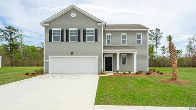 Reflections Single Family Home For Sale: 260 Carmello Circle