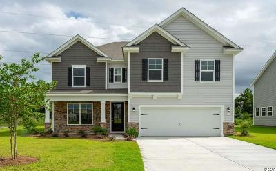 Murrells Inlet Single Family Home For Sale: 209 Star Lake Dr.