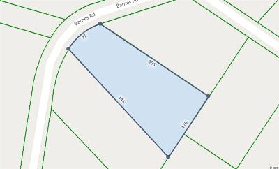 Residential Lots & Land For Sale: Lot E Barnes Rd.