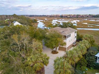 Pawleys Island Single Family Home For Sale: 127 Sea Level Loop