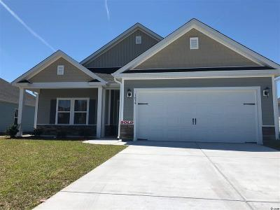 Myrtle Beach Single Family Home Active-Pend. Cntgt. On Financi: 1674 Palmetto Palm Dr.