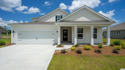 Murrells Inlet Single Family Home For Sale: Tbd 3b Bucky Loop