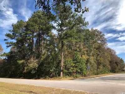 Georgetown County, Horry County Residential Lots & Land For Sale: Lot 54 Pelican Bay Rd.