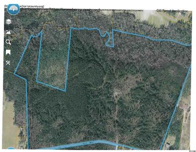Horry County Residential Lots & Land For Sale: Parcel 1 Huckleberry Rd.