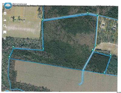 Horry County Residential Lots & Land For Sale: Parcel 2 Huckleberry Rd.