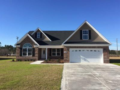 Horry County Single Family Home For Sale: 389 Farmtrac Dr.