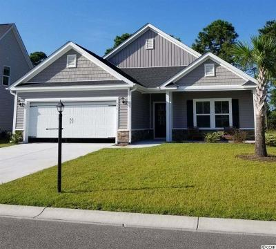 Myrtle Beach Single Family Home Active-Pend. Cntgt. On Financi: 1702 Palmetto Palm Dr.