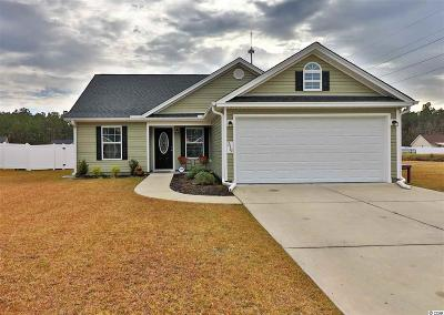 Horry County Single Family Home For Sale: 319 Beulah Circle