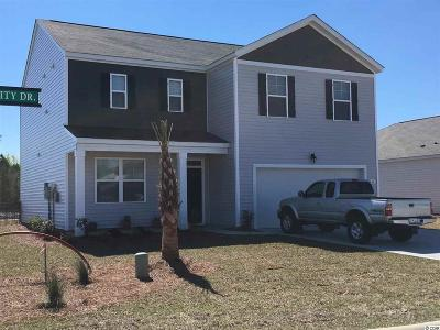 Myrtle Beach Single Family Home For Sale: 564 Affinity Dr.