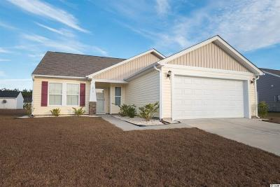 Conway Single Family Home For Sale: 1417 Boker Rd.