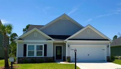 Myrtle Beach Single Family Home For Sale: 1982 Palmetto Palm Dr.