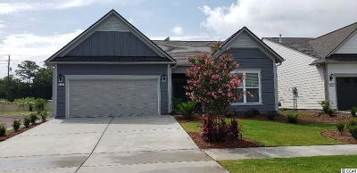 Myrtle Beach Single Family Home For Sale: 6443 Torino Lane