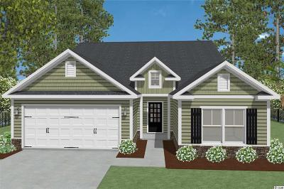 Myrtle Beach Single Family Home For Sale: Tbd Palmetto Palm Dr.