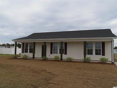 Conway Single Family Home For Sale: 495 Hallie Martin Rd.