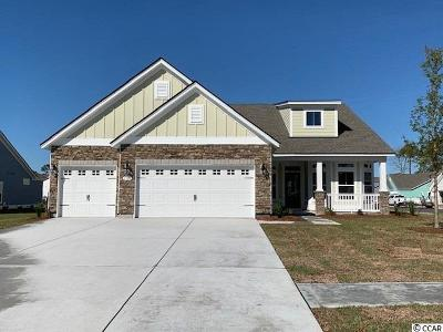 North Myrtle Beach Single Family Home For Sale: 1709 Summer Bay Dr.