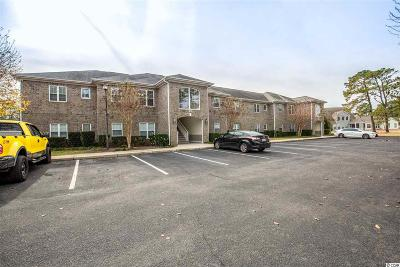 Conway Condo/Townhouse Active-Pend. Cntgt. On Financi: 400 Willow Green Dr. #E