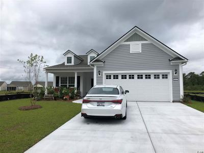 Myrtle Beach Single Family Home For Sale: 4337 Hawkins Dr.