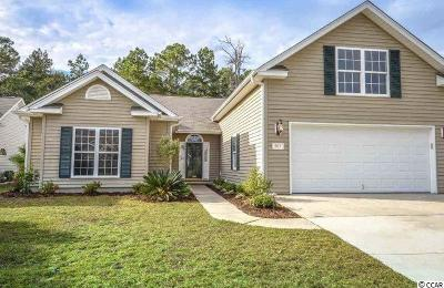 Georgetown County, Horry County Single Family Home For Sale: 501 Westham Dr.